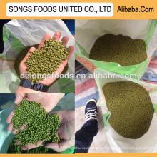 Nueva especificación verde de las habas de mung de la venta caliente de la cosecha