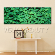 Flora Panoramic Picture Print On Canvas With Stretched Ready To Hang On Wall