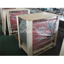 Strong Packing Diesel Generator Set (5KW)