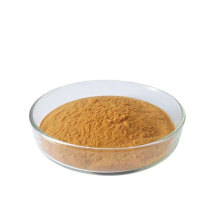 organic shiitake mushroom extract powder fruiting body