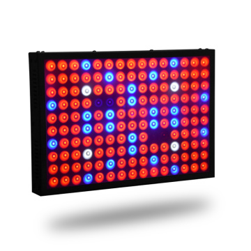 600W full spektrum led växer ljus