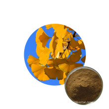High quality extract ginkgo biloba powder