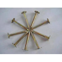 Common Wire Nails / Roofing Nails / Galvanized concrete Nails