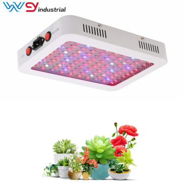 Planta de interior de 600W LED Grow Light