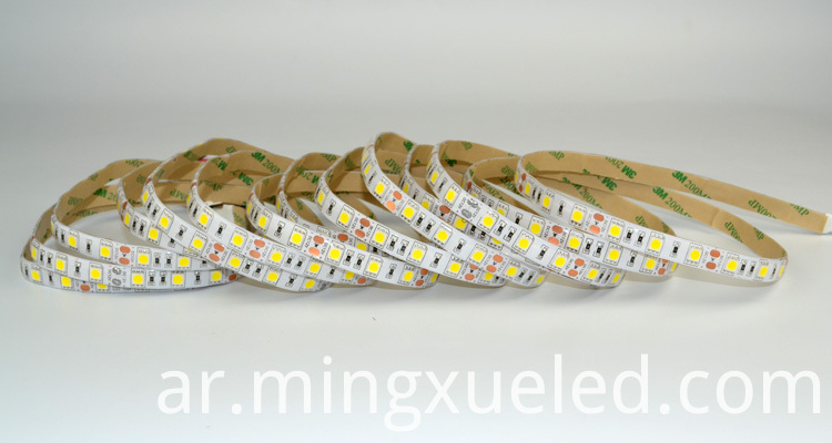 led strip 5050 11