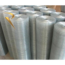 China manufacturer Galvanized welded wire mesh panel or roll, PVC coated Welded Wire