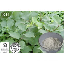 Pure Natural Polygonum Cuspidatum Extract Resveratrol 10%-98% by HPLC; Water Soluble Resveratrol