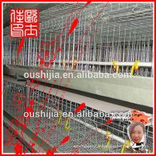 Cage de poulet à la volaille (manufacture)