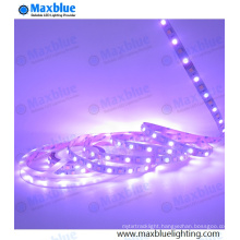 RGB+White+Cool White 72LEDs Per Meter 12mm LED Strip Light