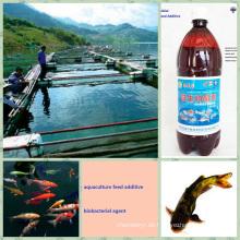 Bio-Bio-Präparat für Futtermittelzusatzstoffe fördern das Wachstum der Aquakultur