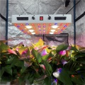 Dimmbare 600 Watt CXB3590 COB LED Grow Fixture