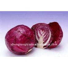 Légume chou violet frais