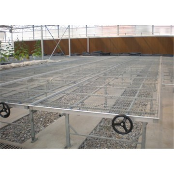 Agriculture Seed rolling bench For Greenhouse