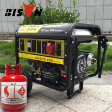 BISON (CHINA) Neue Technologie Versorgung 5kw Biogas Generator