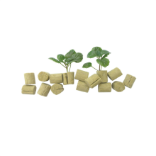 Greenhouse Hydroponic Rock Wool Plugs Para Sementes De Tomate Seedling