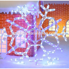 Holiday Living Customized Lighted christmas ornements