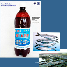 seaweed organic microbial fish feed additives fertilizer