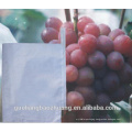 Chile Market Hot Selling UV Resistance Table Grape Paper Bag Cheap Price Single Layer Solid Paper Bag to Decrease The Hurts of Birds Bite