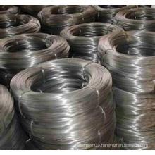 Good-Looking/Strengh Electro Galvanized Iron Wire