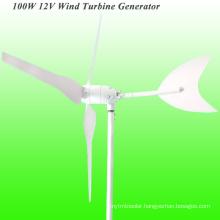 100W Wind Generator, Wind Hybrid Controller for Gardon Light