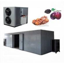 Ginkgo biloba heat pump dryer dehydrator drying machine for sale