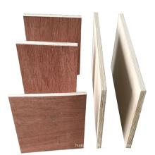 1220*2440MM bintangor face/back eucalyptus core plywood