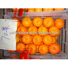 2012 mandarina grande 70mm
