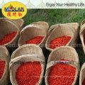 Bayas de Goji Secadas Frutas Super de Ningxia (Lycium barbarum)