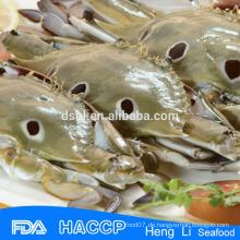 HL004 BQF gefrorene ganze Krabbe auf Verkauf
