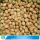 HACCP Common Cultivation Type Walnuts In Shell For Sale