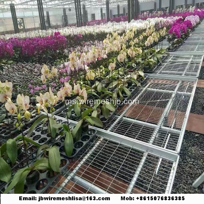 Galvanized Wire Mesh Greenhouse Rolling Benches