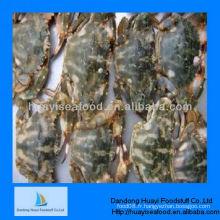 Meilleur crabe de boue frais de haute qualité