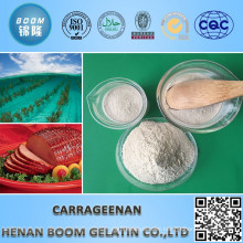 Food Additive Carrageenan Jelly Powder