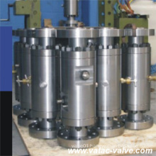 Floating&Trunnion Dbb Type Stainless Steel/Ss/S. S Ss304/Ss316 Ball Valve