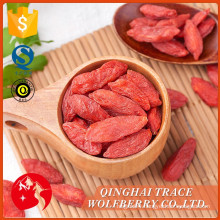 Wholesale high quality organic dried berries