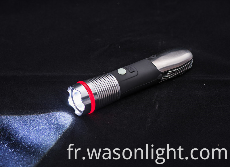 Professional Torch Light