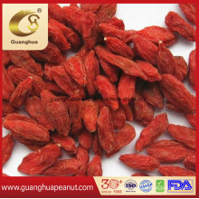 Wholesale Low Pesticide Preserved Gojiberry in Bulk