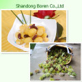 Chinese Delicious Chestnut with Reasonable Price