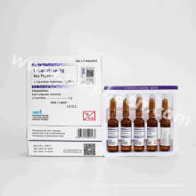 L-Carnitine Injection Weight Loss &Actd/Ctd Dossier of L-Carnitine for Injection