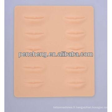 3D Pratique la peau à lèvres fausses en caoutchouc pour les étudiants