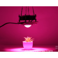 Grow light 200w luz de planta de mazorca