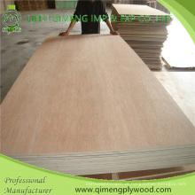 Poplar / Hardwood Core Bbcc grau 15mm Bintangor madeira compensada com preço barato