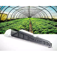 Nuevo estilo Fluence IP65 LED Grow Light