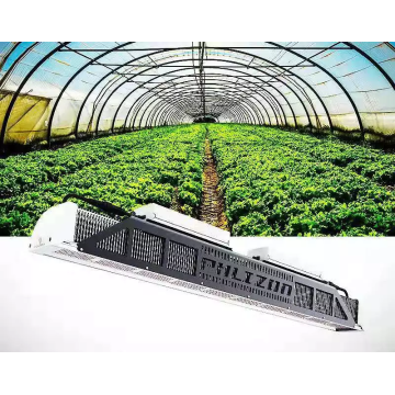 Spider Farmer Led Grow Light para vertical