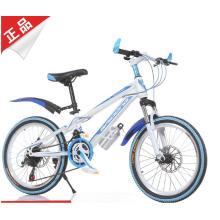 Bicicleta de montanha de estilo legal para jovens