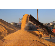Factory Directly Sell Quality Peanut Drying Machine