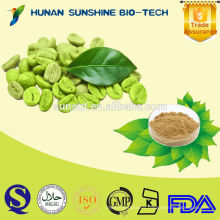 Bulk powder Green coffee bean extract Capsules/ Pure green coffee bean/ Free sample Green coffee bean