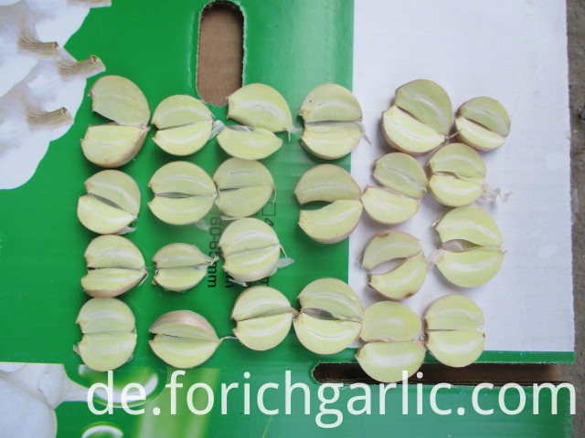 Jinxiang Fresh Normal White Garlic
