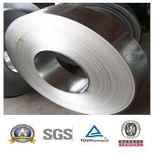 Galvanisierte Stahlspule für Lieferant