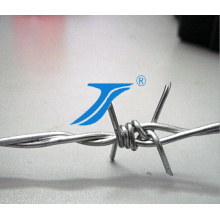 Galvanized Barbed Wire Fencing, Barbed Wire